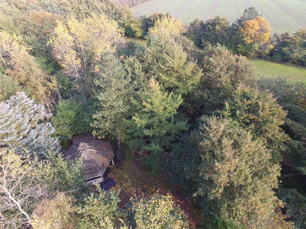 På knaplund er der 7 hektar at boltre sig på. I skoven ligger et shelter.